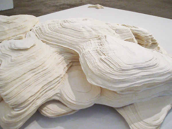 Sculpaper 1, 2006 (detail)